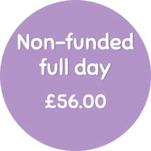 non funded full day